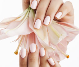 XSport Spa Manis and Pedis thumbnail image